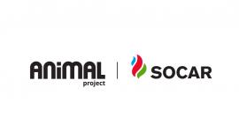 სოკარი და 'პროექტი ცხოველებისთვის' დამეგობრდნენ